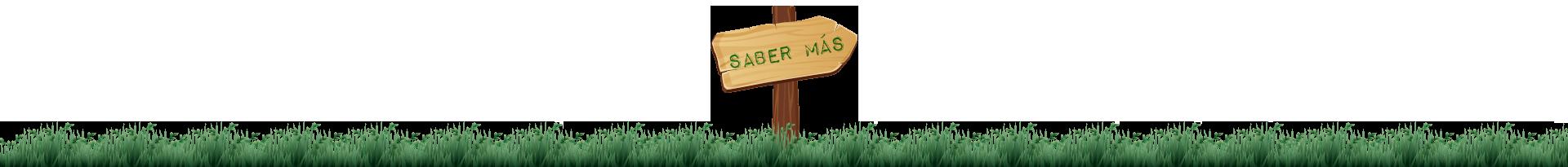SABER-MAS-FULL
