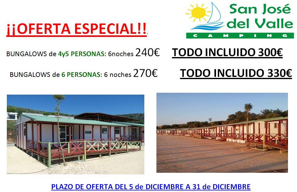 oferta-diciembre